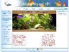 Vente de poissons d 39 aquarium en ligne eleveur for Poisson aquarium vente en ligne