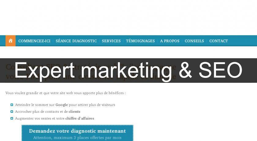 Expert marketing & SEO