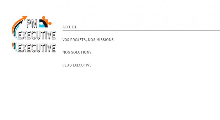cabinet spécialisé en Management de Transition : PROJECT MANAGEMENT EXECUTIVE