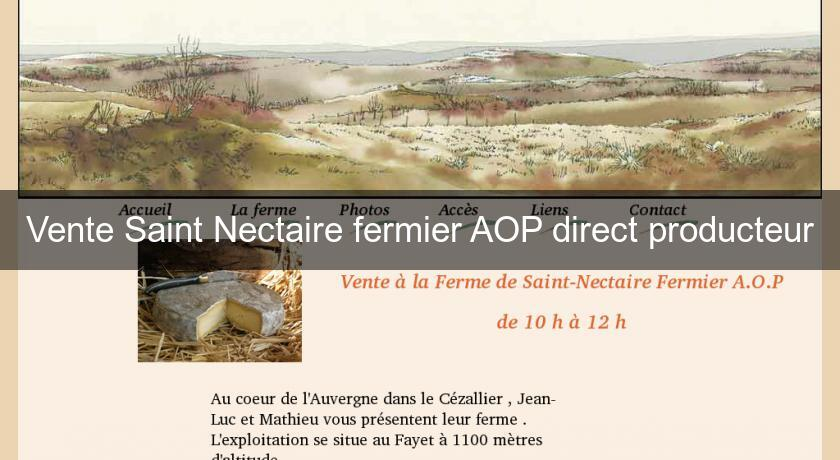 Vente Saint Nectaire fermier AOP direct producteur