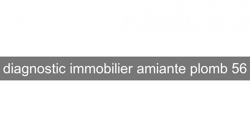 diagnostic immobilier amiante plomb 56