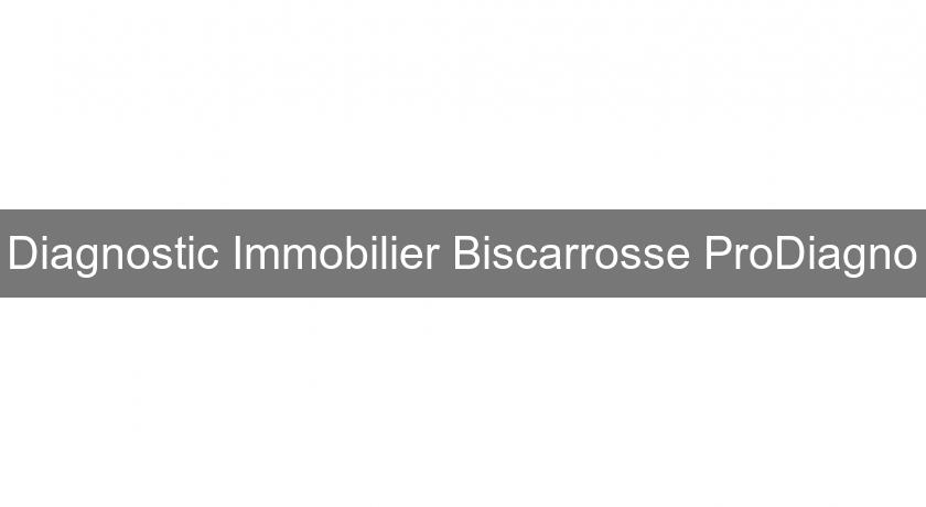 Diagnostic Immobilier Biscarrosse ProDiagno