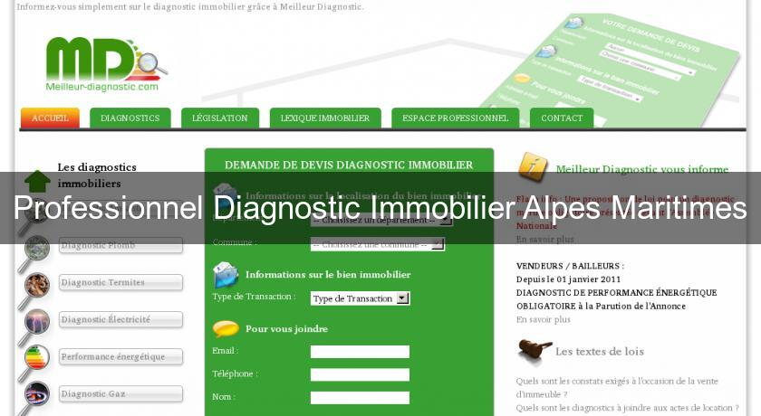 Professionnel Diagnostic Immobilier Alpes Maritimes