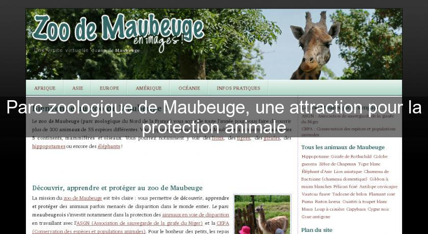 Parc zoologique de Maubeuge, une attraction pour la protection animale