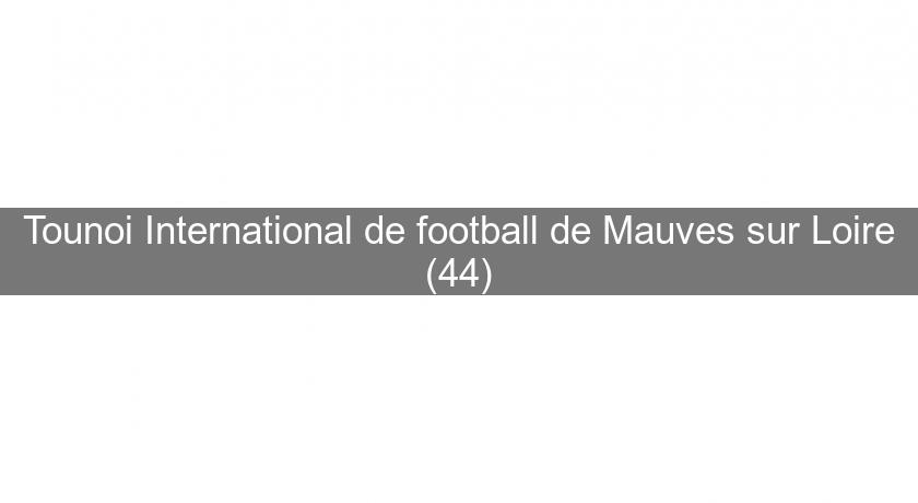 Tounoi International de football de Mauves sur Loire (44)