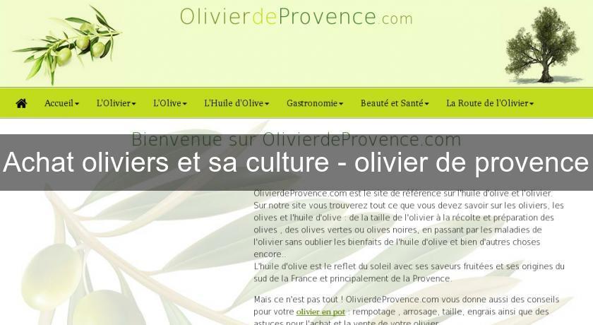Achat Oliviers Et Sa Culture Olivier De Provence Arbre