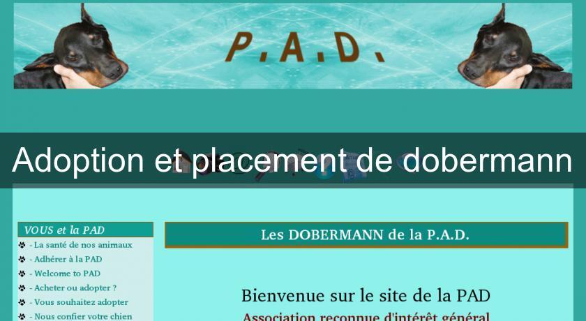 Adoption Et Placement De Dobermann Chien
