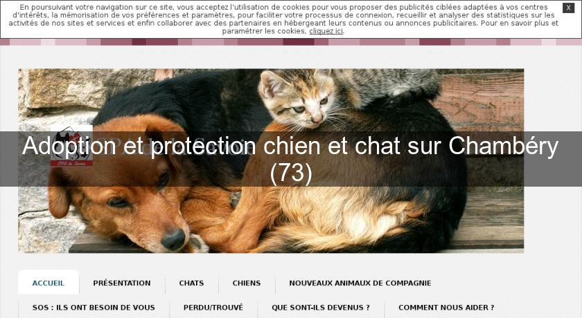 adoption et protection chien et chat sur chamb ry 73 association et f d ration. Black Bedroom Furniture Sets. Home Design Ideas