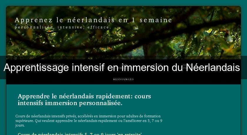 Apprentissage intensif en immersion du Néerlandais