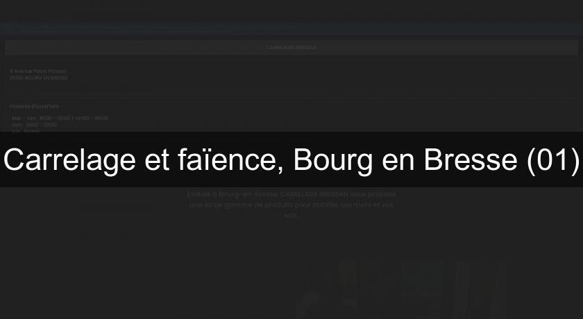 Carrelage Et Fa 239 Ence Bourg En Bresse 01 Carrelage