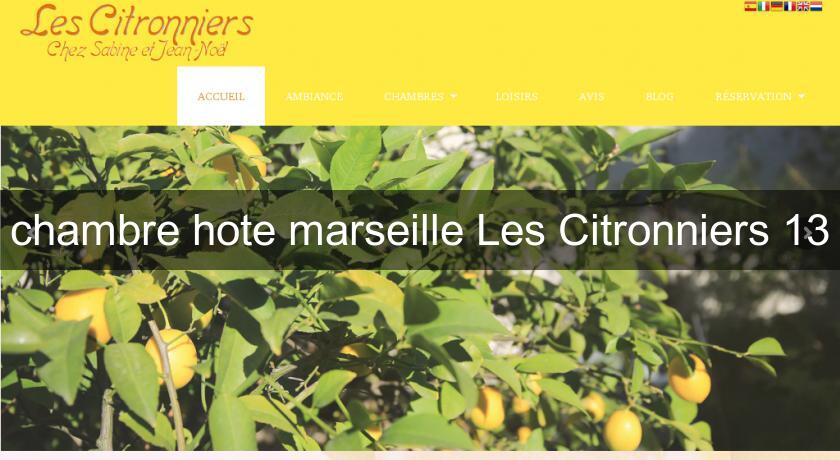chambre hote marseille les citronniers 13 provence alpes cote d'azur