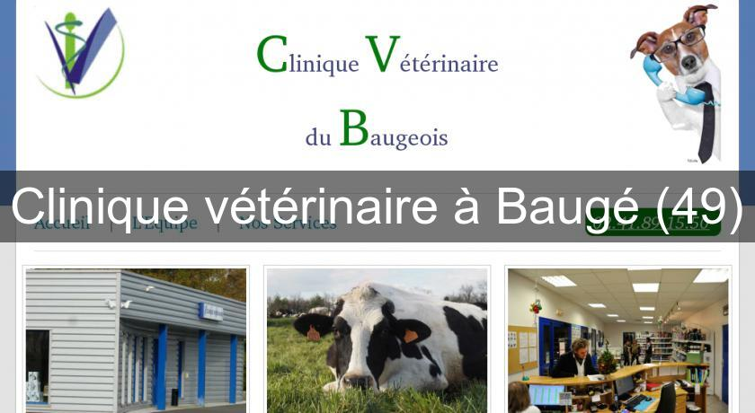 Clinique v t rinaire baug 49 v t rinaire for Service veterinaire cuisine