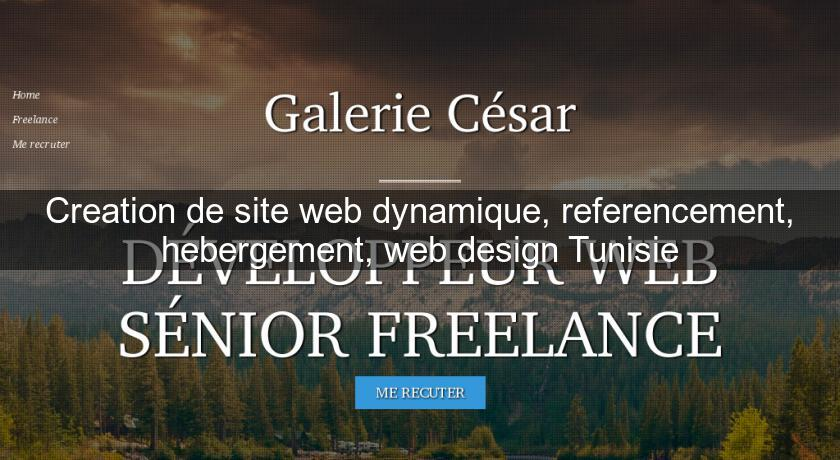 Creation de site web dynamique, referencement, hebergement, web design Tunisie