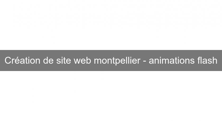 Création de site web montpellier - animations flash