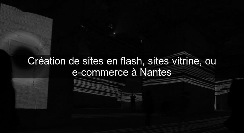 Création de sites en flash, sites vitrine, ou e-commerce à Nantes