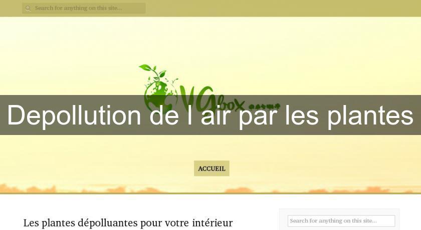 Depollution de l 39 air par les plantes fabricant - Depollution par les plantes ...