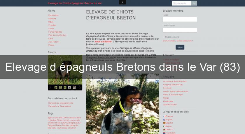Elevage D Epagneuls Bretons Dans Le Var 83 Chien De Chasse