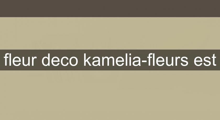fleur deco kamelia fleurs est fleuriste. Black Bedroom Furniture Sets. Home Design Ideas