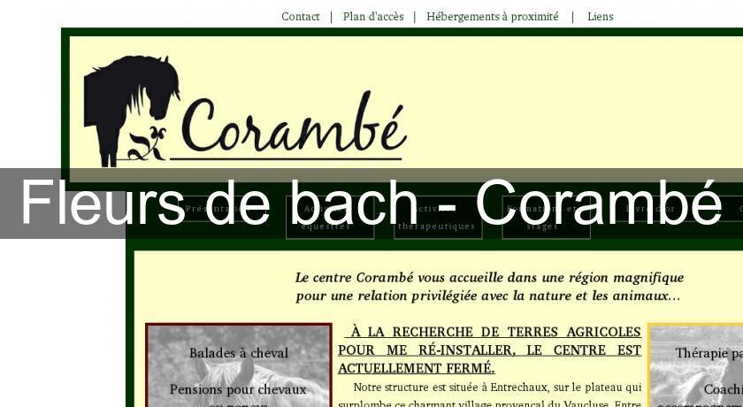 fleurs de bach coramb annuaire forum et blog. Black Bedroom Furniture Sets. Home Design Ideas