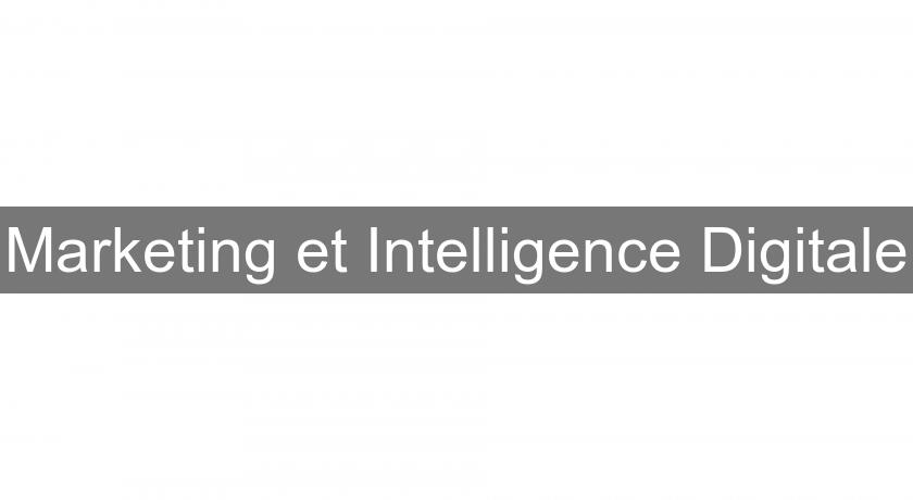 Marketing et Intelligence Digitale