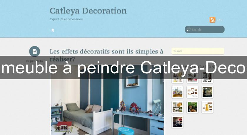 meuble peindre catleya deco mobilier bois. Black Bedroom Furniture Sets. Home Design Ideas