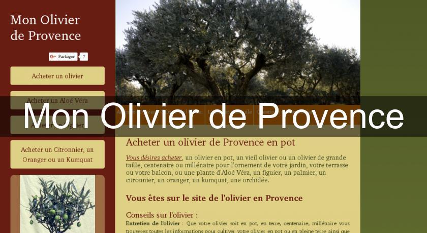 Mon Olivier de Provence Arbre