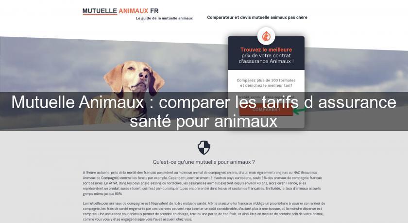 mutuelle animaux comparer les tarifs d 39 assurance sant pour animaux assurance sant. Black Bedroom Furniture Sets. Home Design Ideas