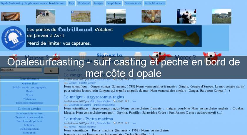 Opalesurfcasting surf casting et peche en bord de mer - Chambre d hote cote d opale bord de mer ...
