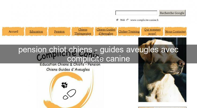 pension chiot chiens - guides aveugles avec complicite canine