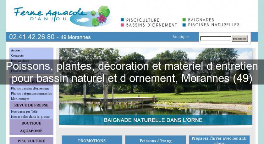 poissons plantes dcoration et matriel dentretien pour bassin naturel et dornement morannes 49 bassin de jardin