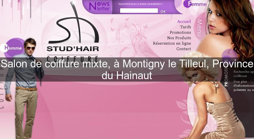 Salon de coiffure mixte montigny le tilleul province du hainaut coiffure - Salon de toilettage hainaut ...