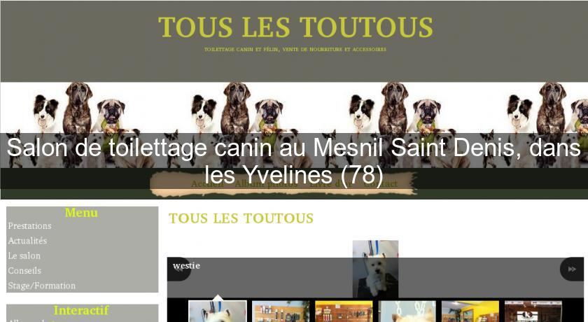 Salon de toilettage canin au mesnil saint denis dans les for Salon de toilettage canin