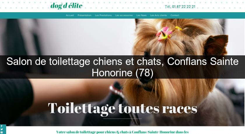 Salon de toilettage chiens et chats, Conflans Sainte Honorine (78)