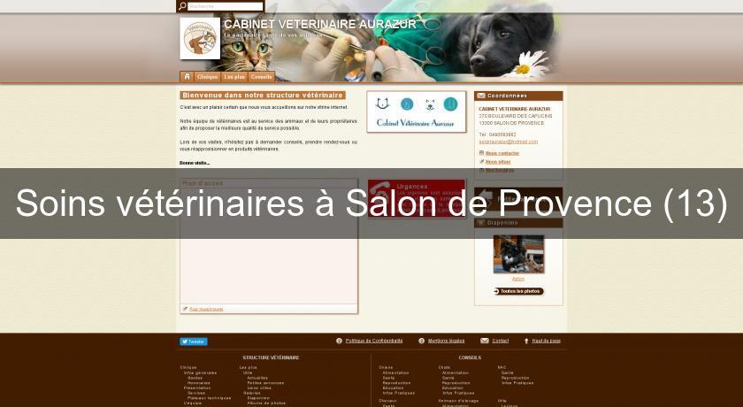 Soins v t rinaires salon de provence 13 v t rinaire - Auberge de beaute et spa salon de provence ...