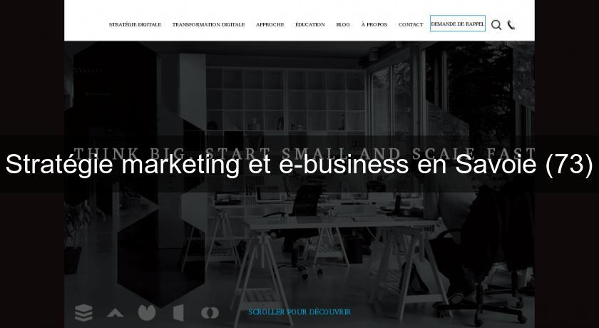 Stratégie marketing et e-business en Savoie (73)
