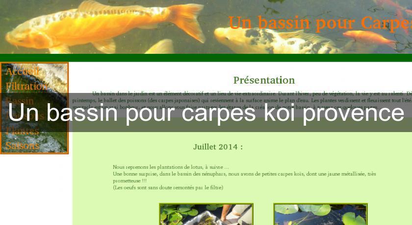 Un Bassin Pour Carpes Koi Provence Bassin De Jardin