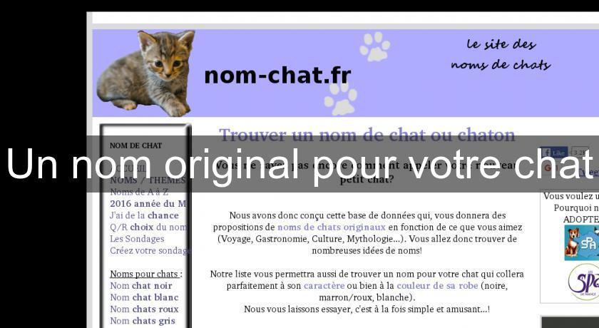 Site de rencontres en ligne salons de chat