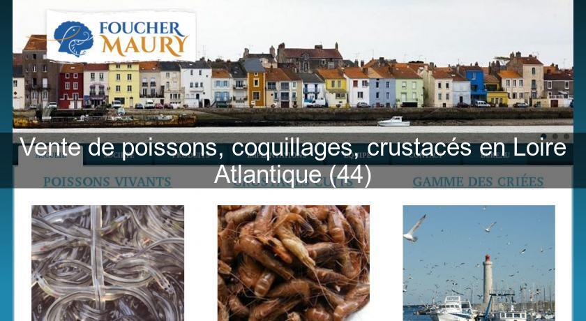 Vente de poissons coquillages crustac s en loire for Vente de poisson
