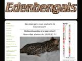 Elevage de chat de race Bengal à Toulouse (31)
