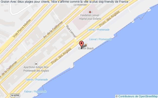 plan Avec Deux Plages Pour Chiens, Nice S'affirme Comme La Ville La Plus Dog-friendly De France
