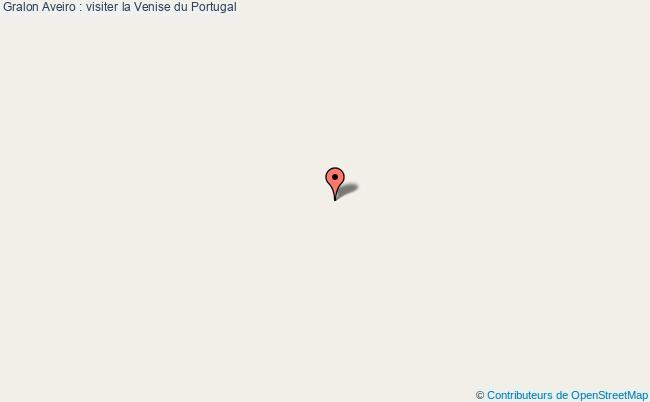 plan Aveiro : Visiter La Venise Du Portugal