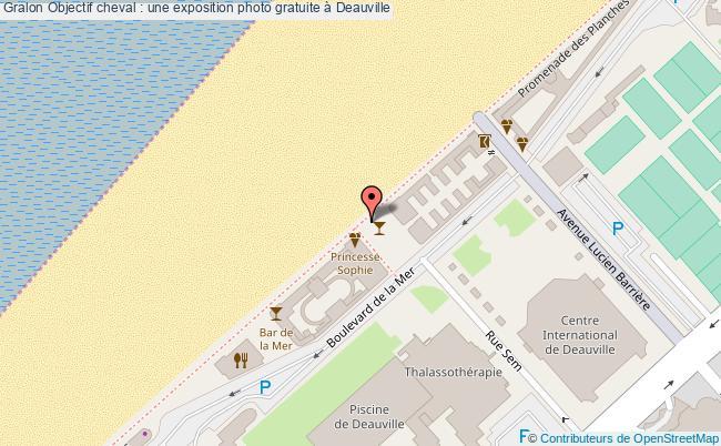 plan Objectif Cheval : Une Exposition Photo Gratuite à Deauville