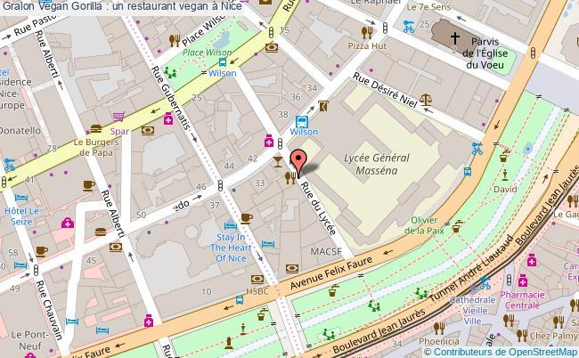 plan Vegan Gorilla : Un Restaurant Vegan à Nice