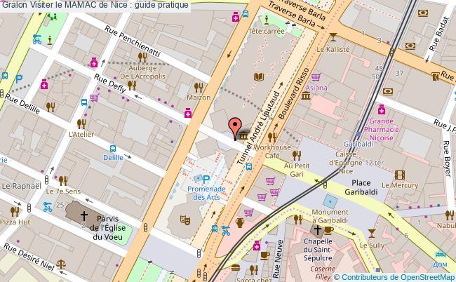 plan Visiter Le Mamac De Nice : Guide Pratique