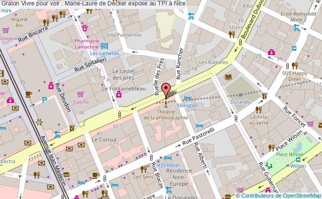 plan Vivre Pour Voir : Marie-laure De Decker Expose Au Tpi à Nice