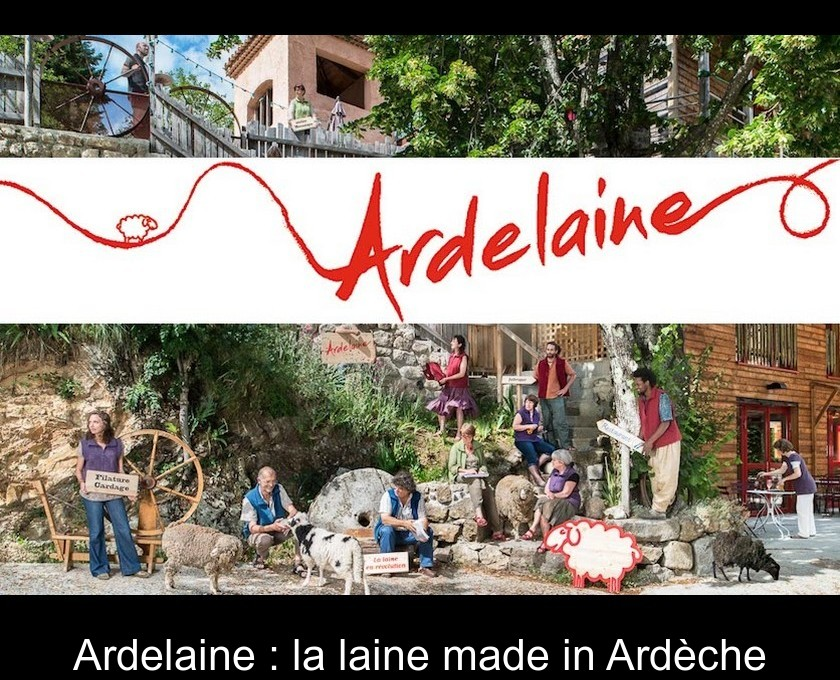 Ardelaine : la laine made in Ardèche