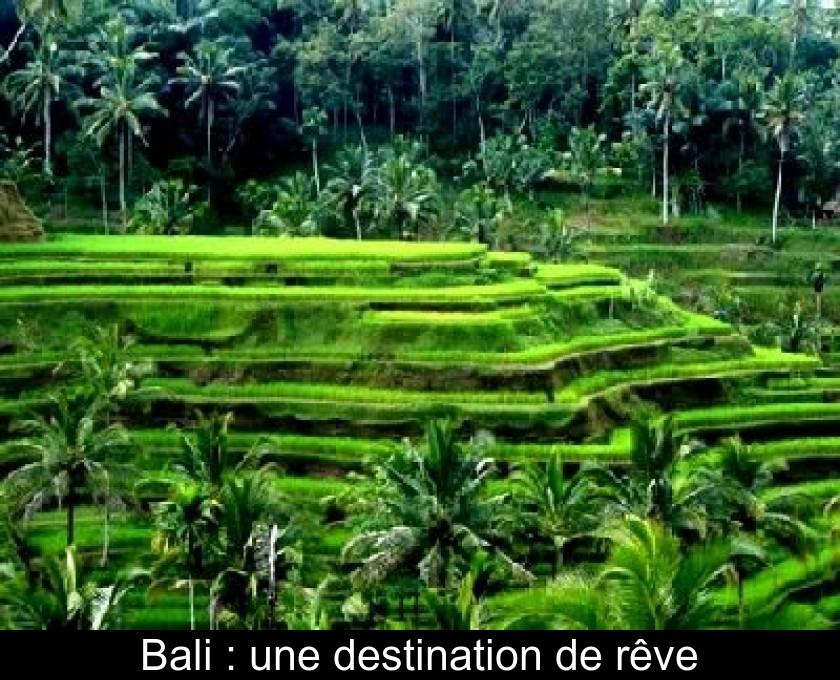 Bali : Une Destination De Rêve