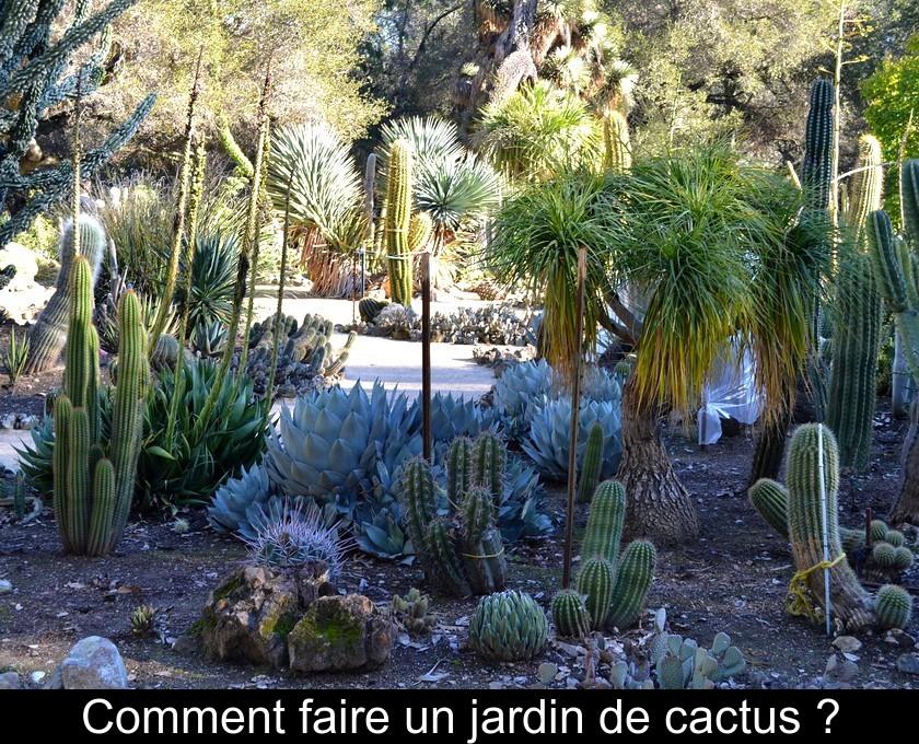 Comment faire un jardin de cactus ?