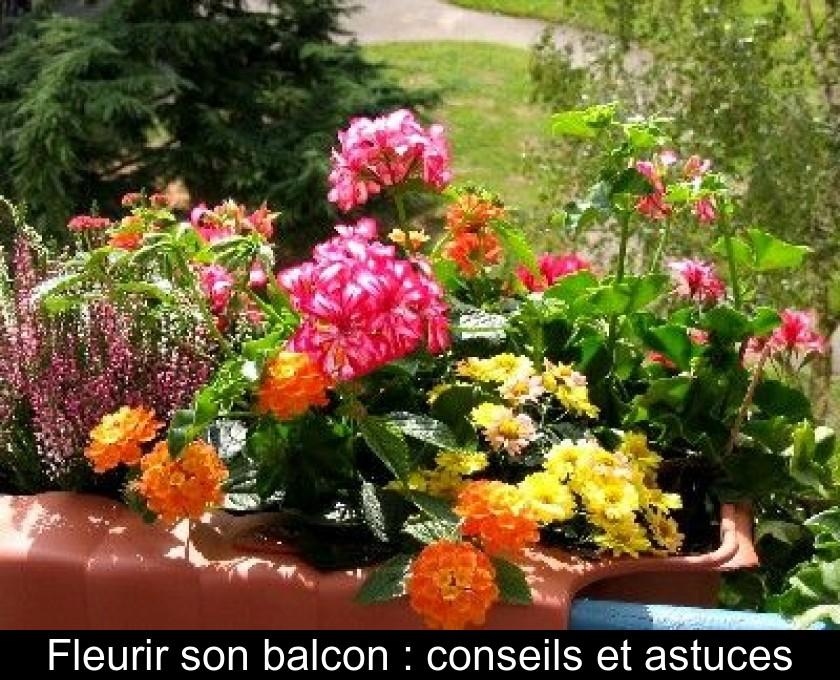 Fleurir son balcon : conseils et astuces