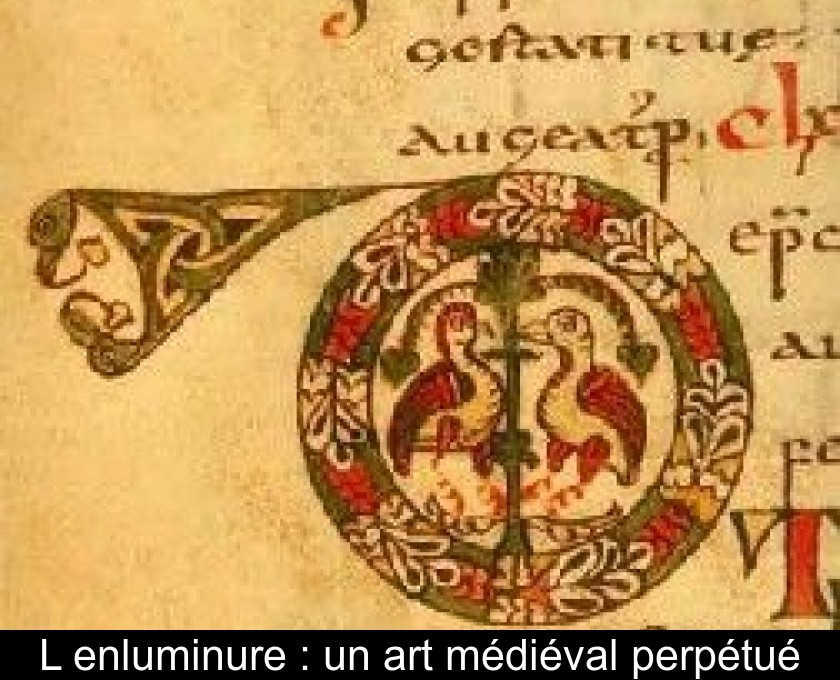 Lenluminure Un Art Médiéval Perpétué